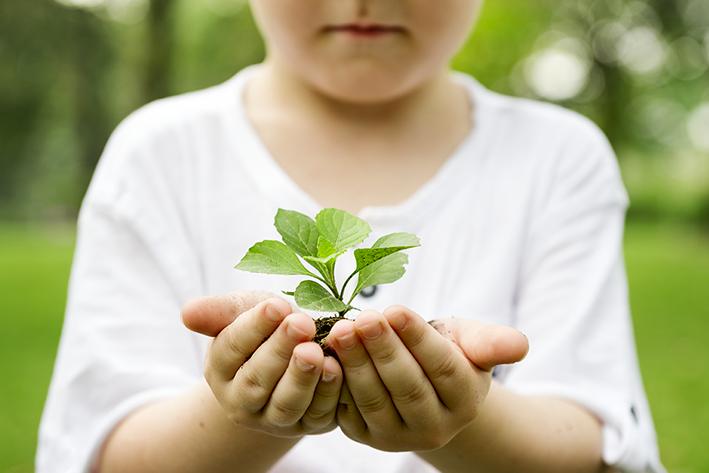little-boy-holding-soil-plant-park